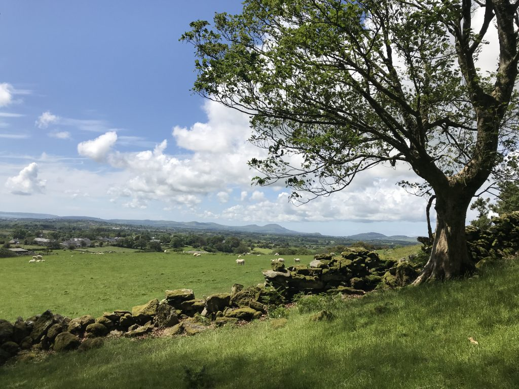 View from Garn Bentyrch