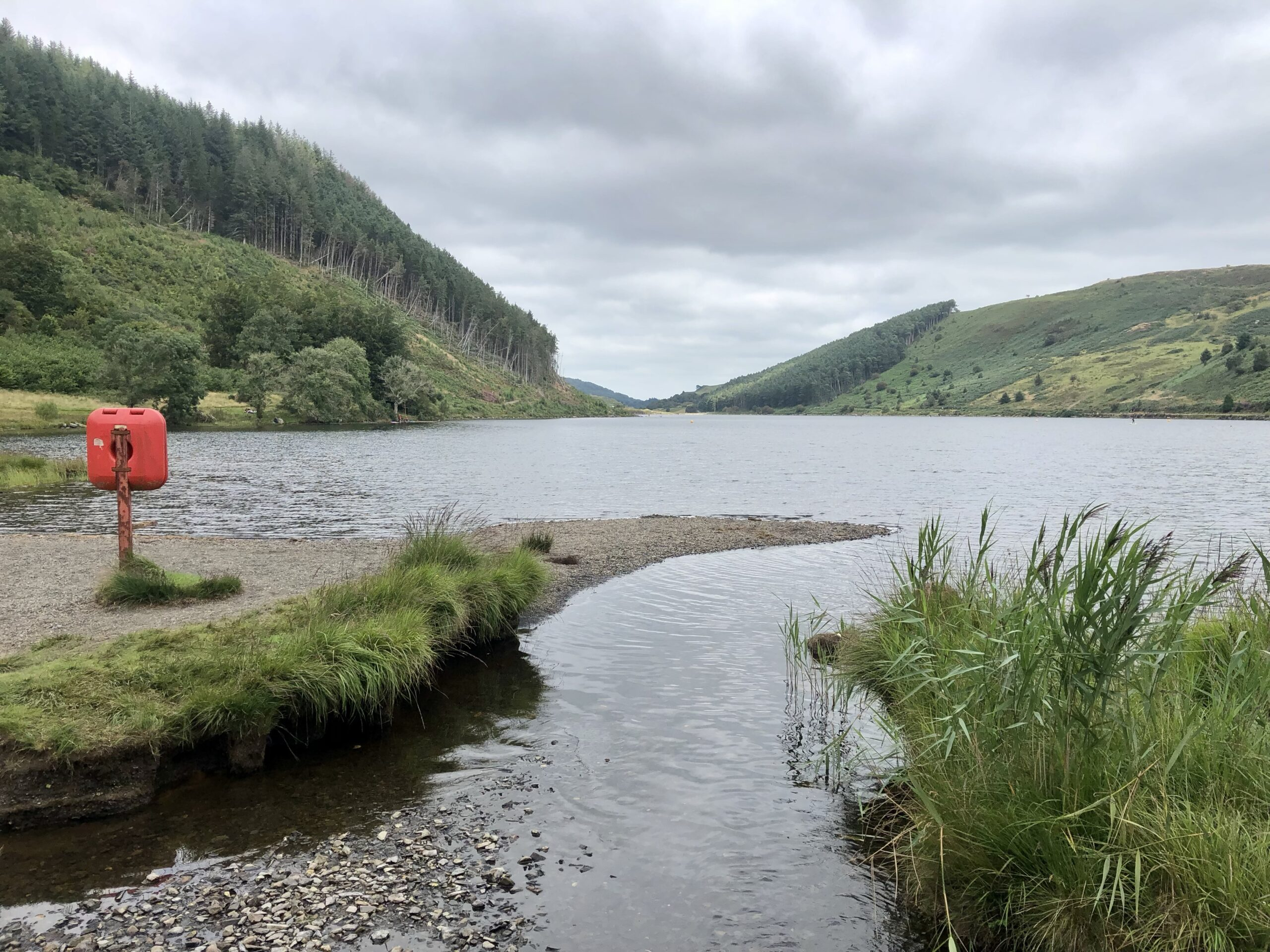 A view of Llyn Geirionydd from the shore along the length of the lake